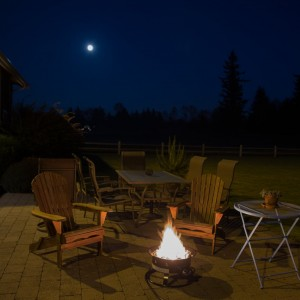 Heininger Portable Propane Outdoor Fire Pit123