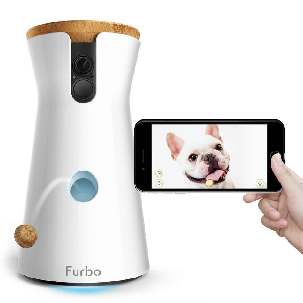 Furbo Dogs At Home