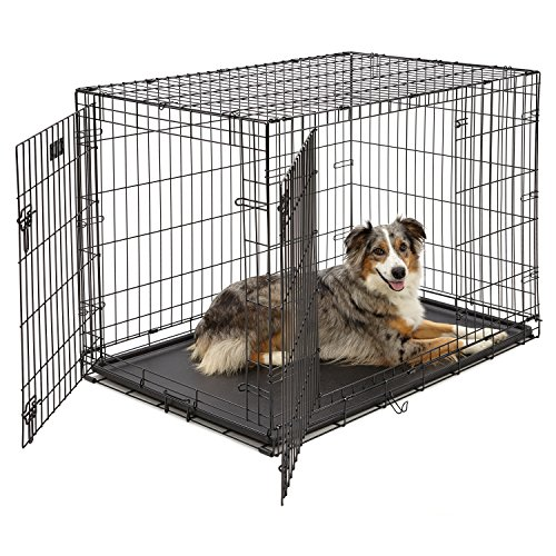 Large Dog Crate | MidWest ICrate Double Door Folding Metal Dog Crate  W/Divider Panel